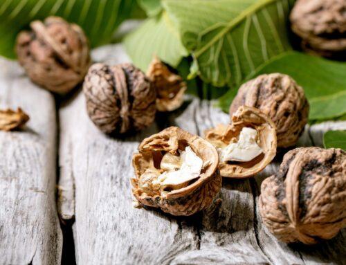 Frutos secos: 5 razones por las que deberías comer nueces